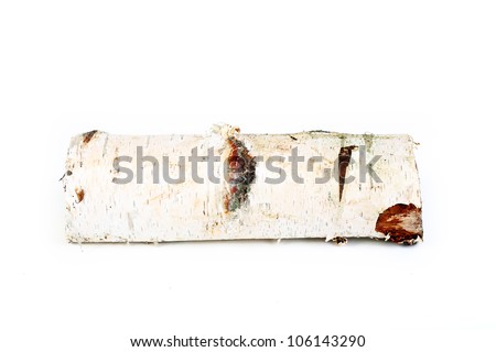 birch tree log - stock photo
