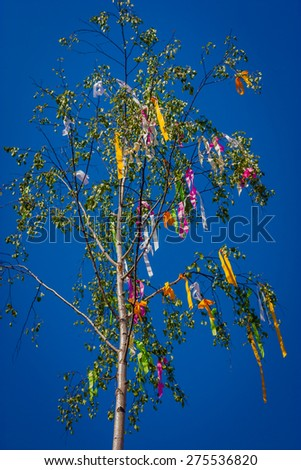 "Birch with ribbons. Pagan celebration ""in May."" Slovakia. - stock photo"