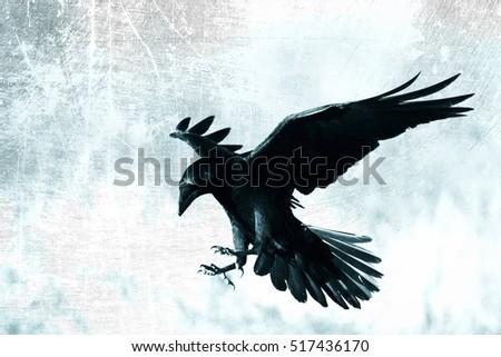 Scary Bird Stock Image...
