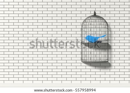 inside the cage essay Essay birds and cages the world is a big place and there are thousands of creatures in it i became aware of true feelings inside me, that a little birds sad eyes brought to the surface cages don't permit communication between the birds.