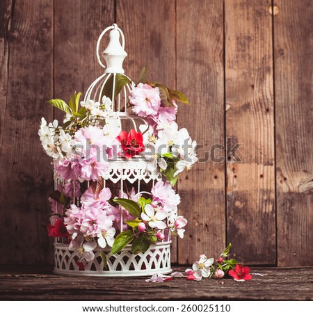 Bird cage with spring blossom of sakura and fruit flowers. Wedding decorations with copy space - stock photo