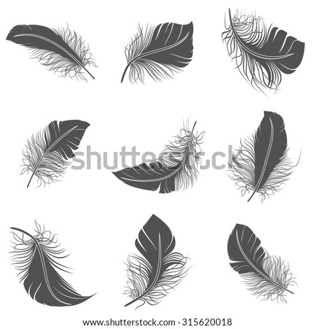 Bird feather black calligraphy literature allegory decorative icons set isolated  illustration - stock photo
