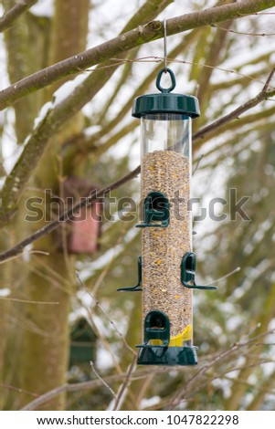 Bird feeder filled with seeds hanging on a treed
