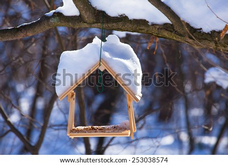 Bird feeder hangs from the branch covered in snow in the forest in winter time - stock photo