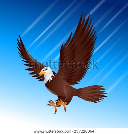 bird flapping eagle wing feather sky flying brown