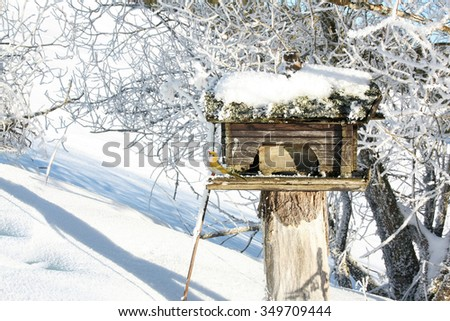 Bird house in winter garden with a deco bird to attract real birds - stock photo