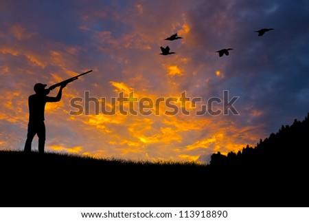 Bird Hunting Silhouette - stock photo