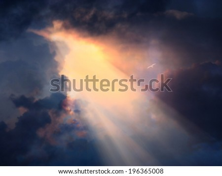 Bird in flight high above in dramatic sky - stock photo