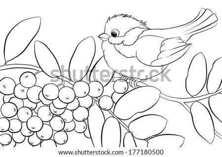 bird in the tree  - stock photo