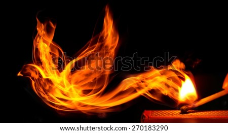 Bird made of fire comes from a burning matchstick - stock photo