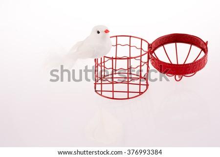 Bird near a red birdcage - stock photo