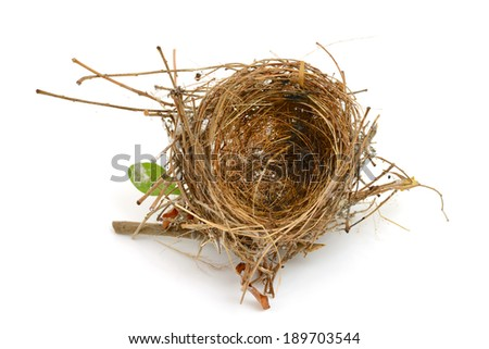 bird nest isolated on white - stock photo