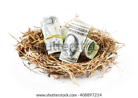 Bird nest with American dollars banknotes isolated on white background