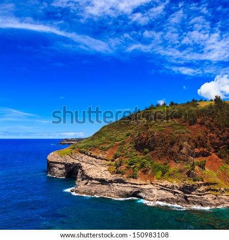 Bird nesting colony at Kilauea lighthouse bay in Kauai, Hawaii Islands. - stock photo