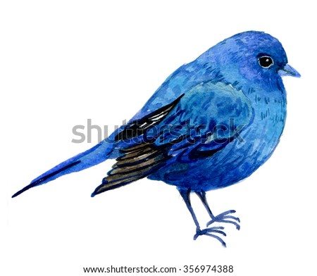 bird on a white background .illustration watercolor - stock photo