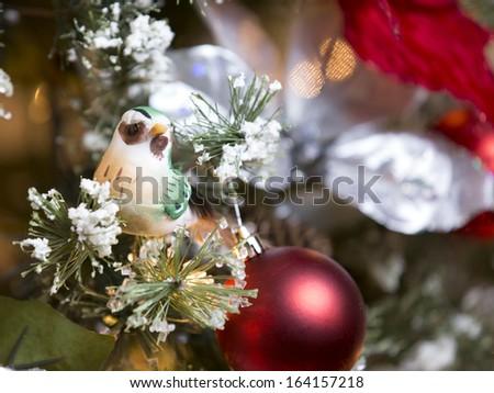 Bird on Christmas tree branch - stock photo