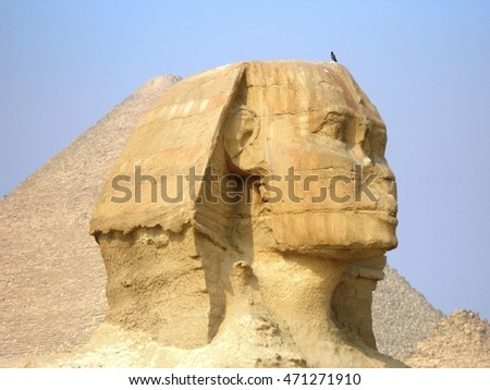 bird on the sphinx
