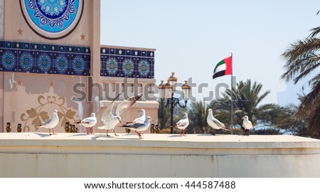 Bird opening wings near the United Arab Emirates flag