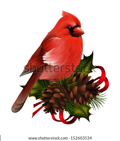 Bird red cardinal on christmas decor - stock photo