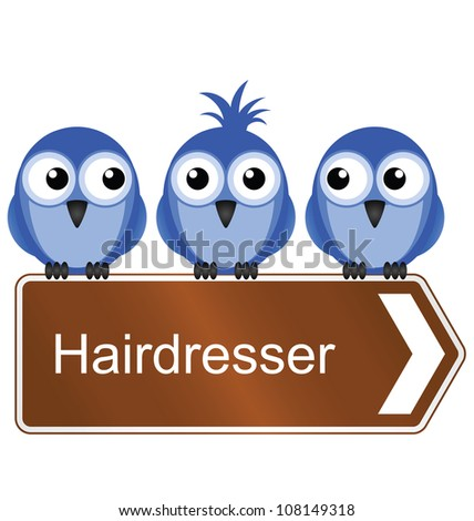 Bird requiring the services of a hairdresser isolated on white background