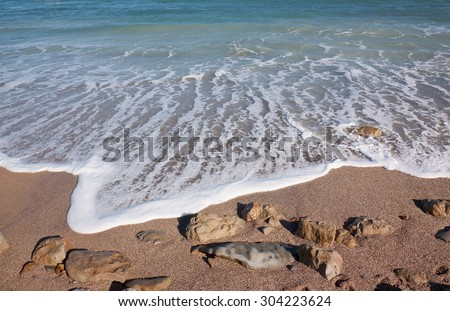bird's eye or aerial view of waves rolling into shore, clear sunny day at a sandy surf beach, Gisborne, North Island, New Zealand  - stock photo