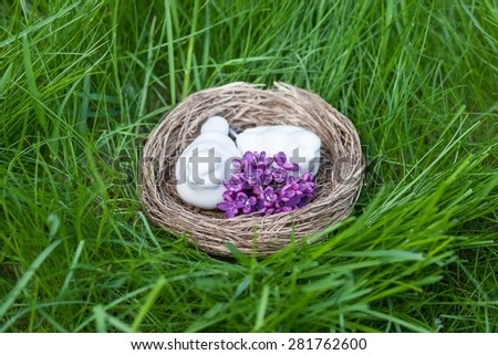 Bird's nest on greeen grass background. Easter decoration - stock photo