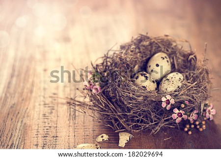 bird's nest with eggs and tiny pink flowers on a wooden table - stock photo