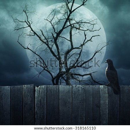 Bird stand on wood fence on spooky tree with moon background, Halloween background