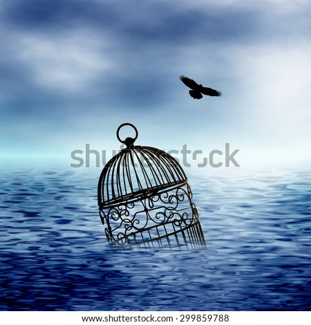 birdcage floating in water and bird flying away from it - stock photo