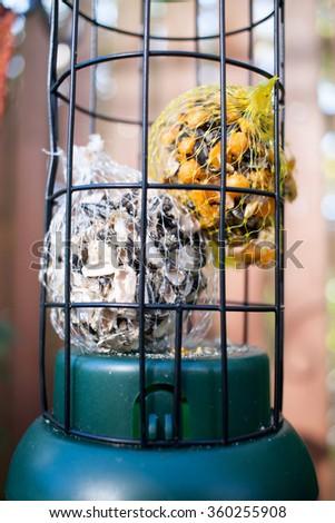 Birdhouse feeder with seeds for birds, - stock photo