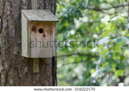 Birdhouse in wood sitting on a tree with green vegetation in the background - stock photo