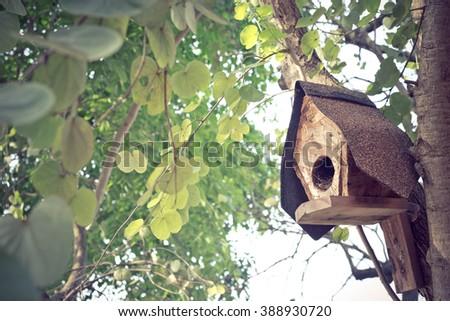 birdhouse on the tree - stock photo