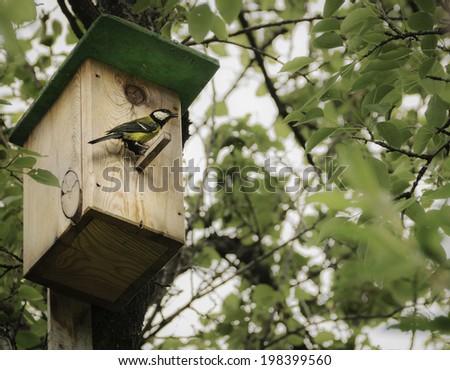 Birdhouse with bird - stock photo