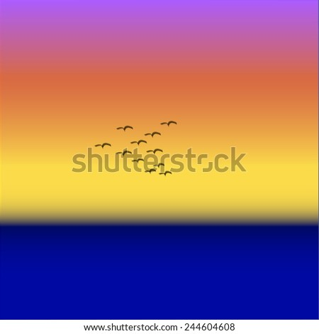 birds at sunset over the sea - stock photo