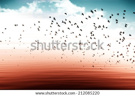 birds flying and abstract sky ,spring background abstract happy background,freedom concept  - stock photo