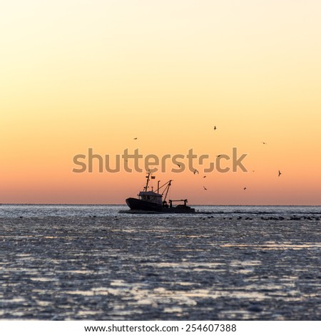 birds flying in sunset over frozen sea and small ship.