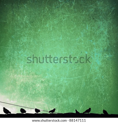 Birds in sky - stock photo
