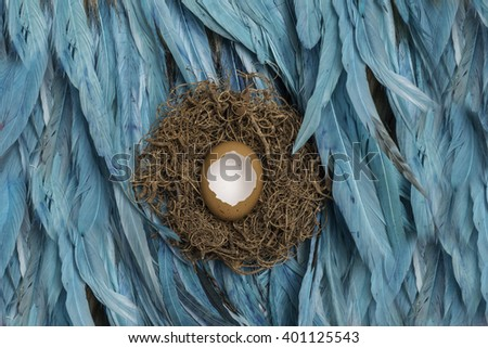 Birds nest with blue feathers and egg newborn photography