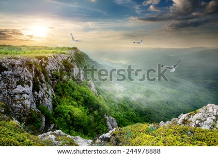 Birds over plateau at the cloudy sunset - stock photo