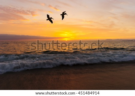 Birds silhouettes is two large seabirds flying against a vivid and colorful ocean sunset as a gentle wave rolls to shore.