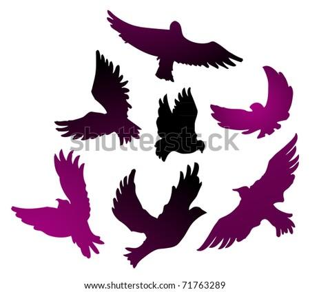 Birds vector set - stock photo