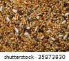 birdseed background - stock photo
