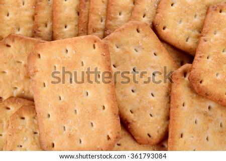 Biscuit Texture Closeup - stock photo