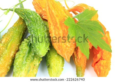 Bitter melon also called balsam pear, bitter gourd, bitter squash, Goya or karavella (Momordica charantia), unripe and ripe fruits isolated before white background - stock photo