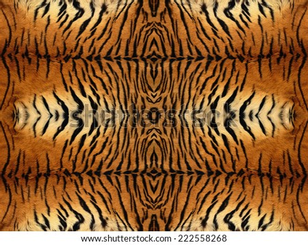Black and orange tiger fur pattern - stock photo