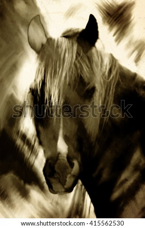 black and white abstract oil paint of horse head, ink vintage artwork  - stock photo