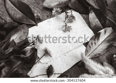 Black and white Autumn background with yellow orange leaves of magnolia on wooden background. Fall theme, Autumn concept background with yellow fall leaves and copy space - stock photo