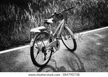 black and white bike on road