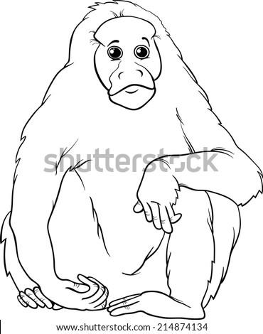 Orangutan Face Coloring Pages