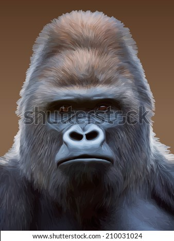 Black and white closeup portrait of a gorilla male, severe silverback. Grave look of the great ape, the most dangerous and biggest monkey of the world. - stock photo